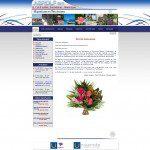 Site Web: ASRDLF 2011